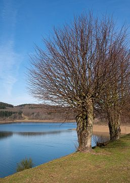 Große Dhünntalsperre, Bergisches Land, Duitsland van Alexander Ludwig