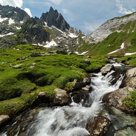 Campolungo en Pizzo Prévat - Ticino - Zwitserland van Felina Photography