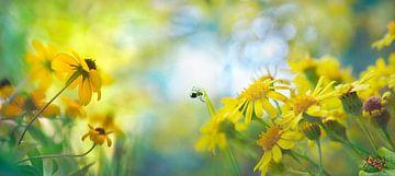 Wilde Blumen mit Spinne von Corinne Welp