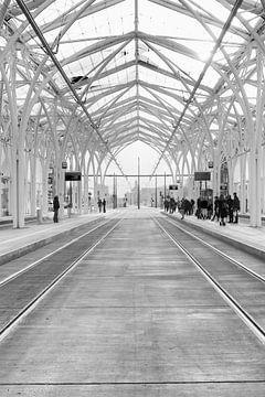 Łódź (lodz) Polen; Piotrkowska Centre; Straßenbahnhaltestelle in schwarz-weiß von Marianne van der Zee