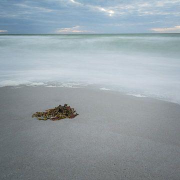 meer en strand van Tobias Luxberg