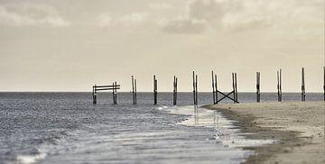 langs de kust van Dick Carlier