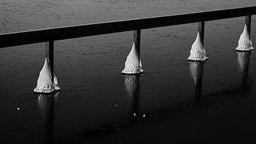 Steiger piramides van BJ Fleers