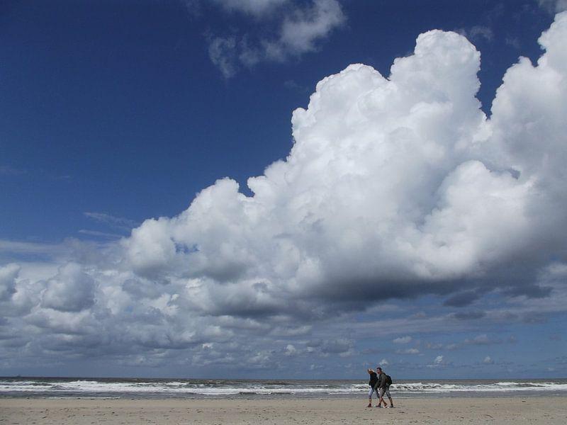 West wind.  von Tina Hartung