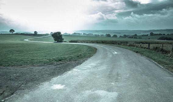 Curvy Road van Maarten De Wispelaere