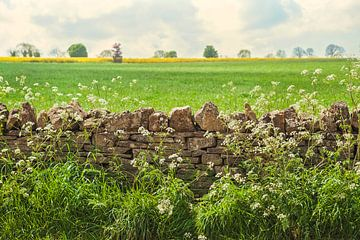 Engels landschap van Anouschka Hendriks