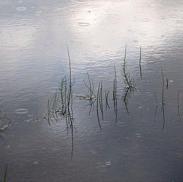 sprietjes in water van George Burggraaff