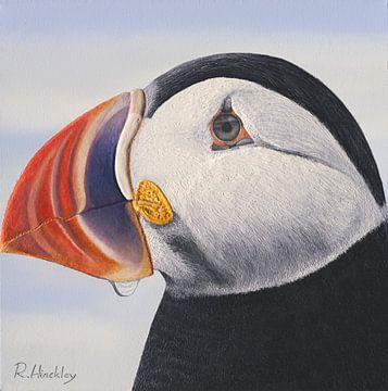Papageientaucher von Russell Hinckley