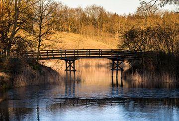 bosgebied met bruggetje over het water van Compuinfoto .