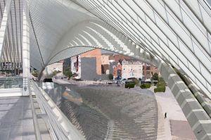 ode aan Santiago Calatrava