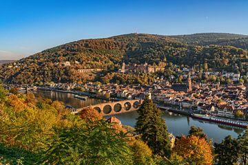 Heidelberg aan de rivier de Neckar van Uwe Ulrich Grün
