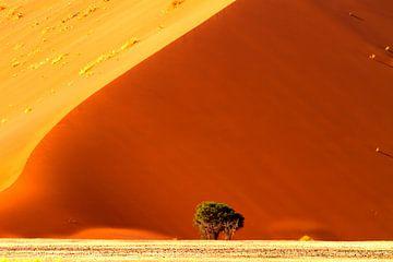 Rode duinen van Sossusvlei van Angelika Stern