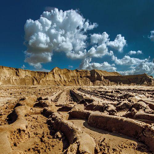 Sporen in het zand von Harrie Muis