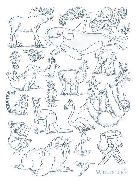 lustige Tierzeichnungen von Stefan Lohr