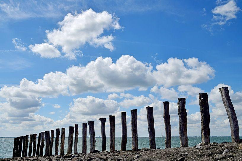 Paalhoofden aan de Oosterschelde van Zeeland op Foto
