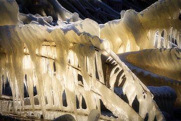Oever ijs sculptuur van Peter Bolman