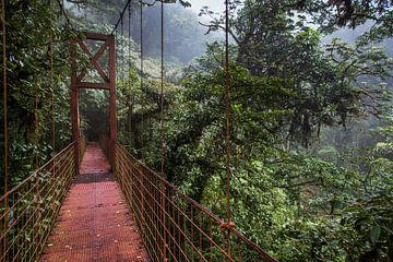 Burg over regenwoud van Julian Buijzen