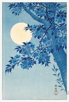 Blossoming Cherry on a Moonlit Night van Rudy en Gisela Schlechter