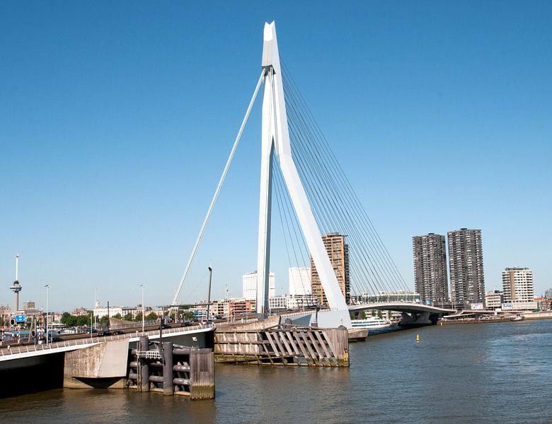 Erasmusburg Rotterdam van Anuska Klaverdijk