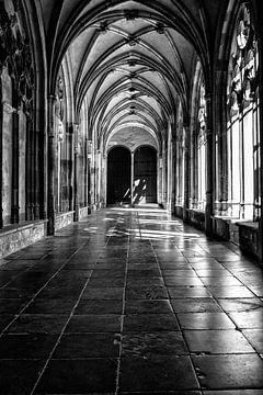Prachtig licht in de kloostergang van de Pandhof van de Domkerk in Utrecht. Zwart-wit. van