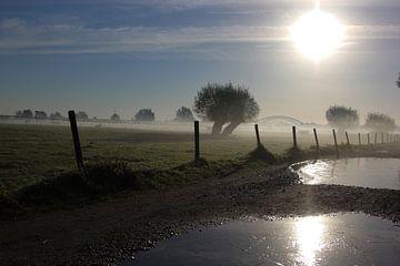 Koude ochtend. van Maarleveld Fotografie
