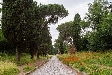 Via Appia Antica 04 von Marcel van der Voet