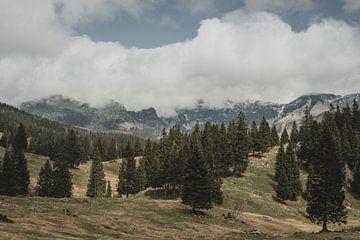 Velika Planina van Paulien van der Werf