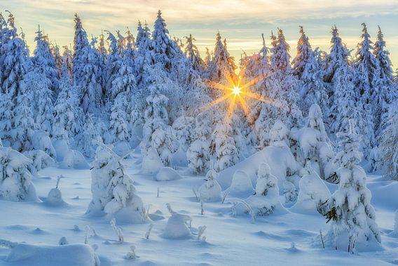 Schneelandschaft im Erzgebirge van Daniela Beyer
