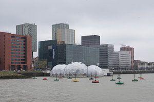 Paviljoen in de Rijnhaven