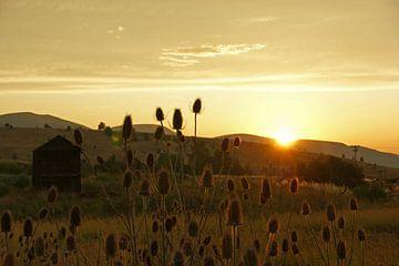 Sonnenuntergang im Wilden Westen von Jeroen van Deel