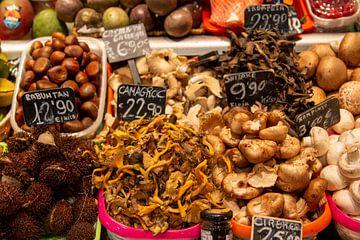 eine große Vielfalt von Pilzen bildet eine Geschmackssensation von Studio de Waay