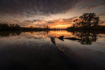 Der Biesbosch mit seinem schönen Sonnenuntergang. von Rick Ermstrang