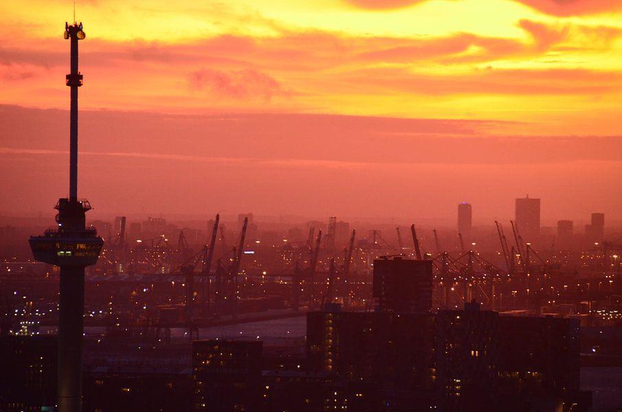 Euromast en de Haven van Rotterdam onder een Rode gloed