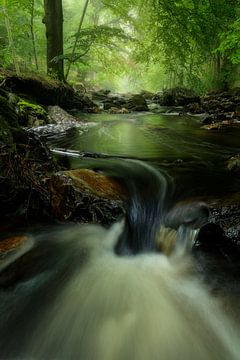 Het riviertje de Helle op de Hoge Venen in de Ardennen. van Jos Pannekoek