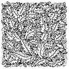Bladeren van ART Eva Maria thumbnail