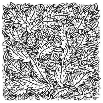 Blätter von ART Eva Maria