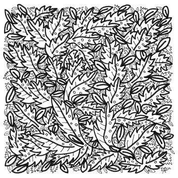 Blätter von Eva van den Hamsvoort