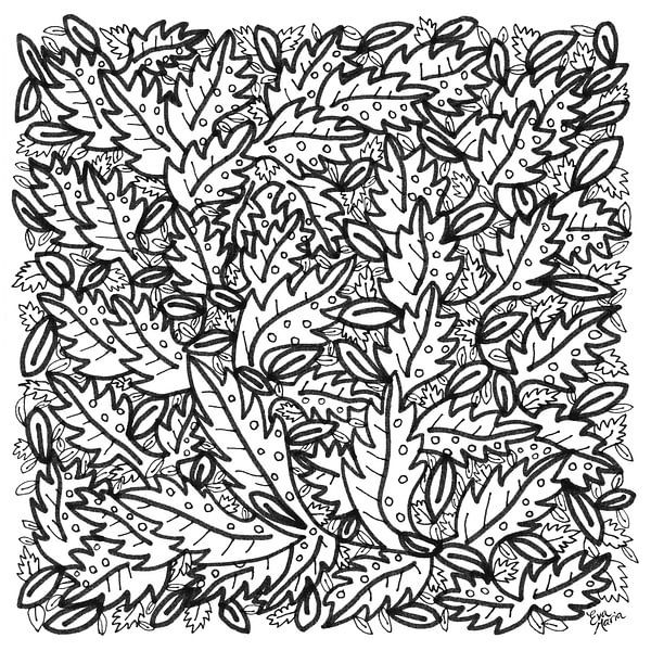 Bladeren van Eva van den Hamsvoort