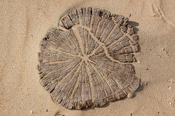 strandpaal van Alfred Meester
