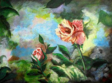 Harmonie van Vera Markgraf