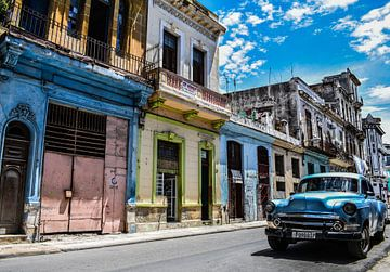 Havanna von Michelle van den Boom