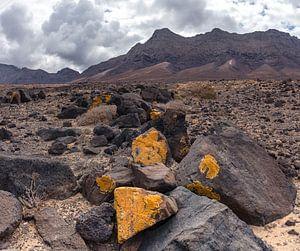 Playa de Cofete, Parque Natural de Jandia, Cofete, Fuerteventura, Canary Islands, Spanje,