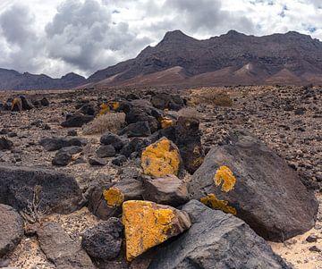Cofete-Strand, Jandia-Naturpark, Cofete, Fuerteventura, Kanarische Inseln, Spanien von Rene van der Meer