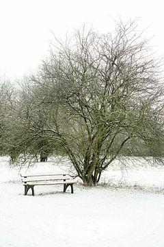 Parkbank im Winter von Heiko Kueverling