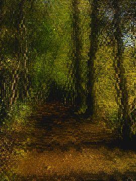 Wald Abstraktion #6 von Keserű Collective