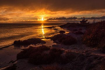 Baltic Sea coast in Klintholm Havn in Denmark van Rico Ködder