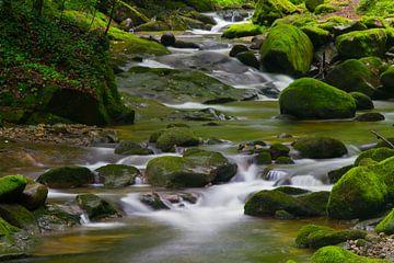 Wasserwege van Ursula Di Chito