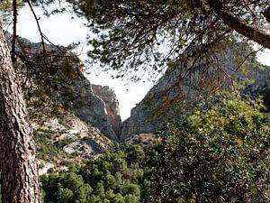 spanien wald und natur caminito del rey von Ivanovic Arndts
