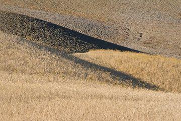 Lijnen en vlakken in Toscane. van Rens Kromhout