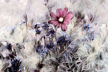 Rote Blume auf der Wiese